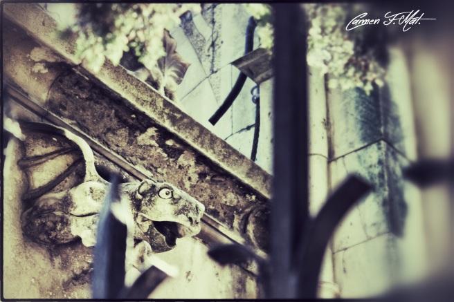IMG_2507_Snapseed