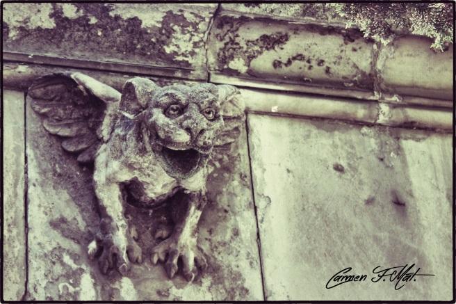IMG_2517_Snapseed